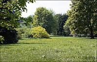 2010-05_AF_01-IMG_6754.jpg