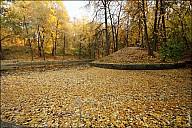 2011-10_08Fall_30_IMG_6972.jpg