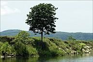 19-River-_MG_5484.jpg