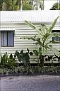 2012-11-xx-Australia-Flora-0815-Mossman-MG_4005.jpg