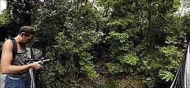 68-Kuranda-1609-15-abc.jpg