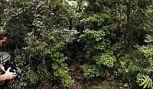 69-Kuranda-1603-08-abc.jpg: 950x556, 464k (2013-01-02, 18:40)
