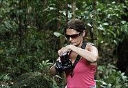 11-RainForest-_MG_4142.jpg