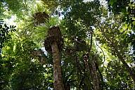 AustraliaAdd-03-2012-11-11-00352.jpg