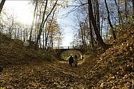 2013-10-12-Sukhanovo-15_MG_5576.jpg