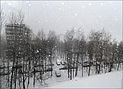 12-01A_MG_5656-abc.jpg