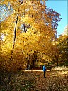 2018-09-13-Sukhanovo-08-130270.jpg