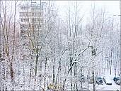 2018-12-11-winter-01-110009.jpg