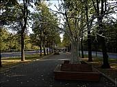 2019-09-12-PhotoRuning-39-9123024.jpg