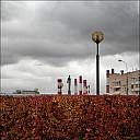2019-10-04-FallRunning-09-040891.jpg