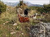 2021-01-04-Turkey-Ruin-04-1041242.jpg