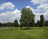 2020-06-28-Kolomenskoe-June-2-01-6280412-abc.jpg: 1486x1200, 651k (2020-06-29, 20:10)