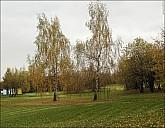2020-10-17-Kolomenskoe-October-2-28-171542.jpg