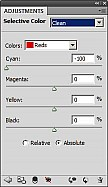 SelectiveColors.jpg: 216x373, 32k (2011-09-21, 16:55)