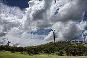 2012sel-Australia-16.jpg: 950x642, 273k (2013-11-06, 20:33)